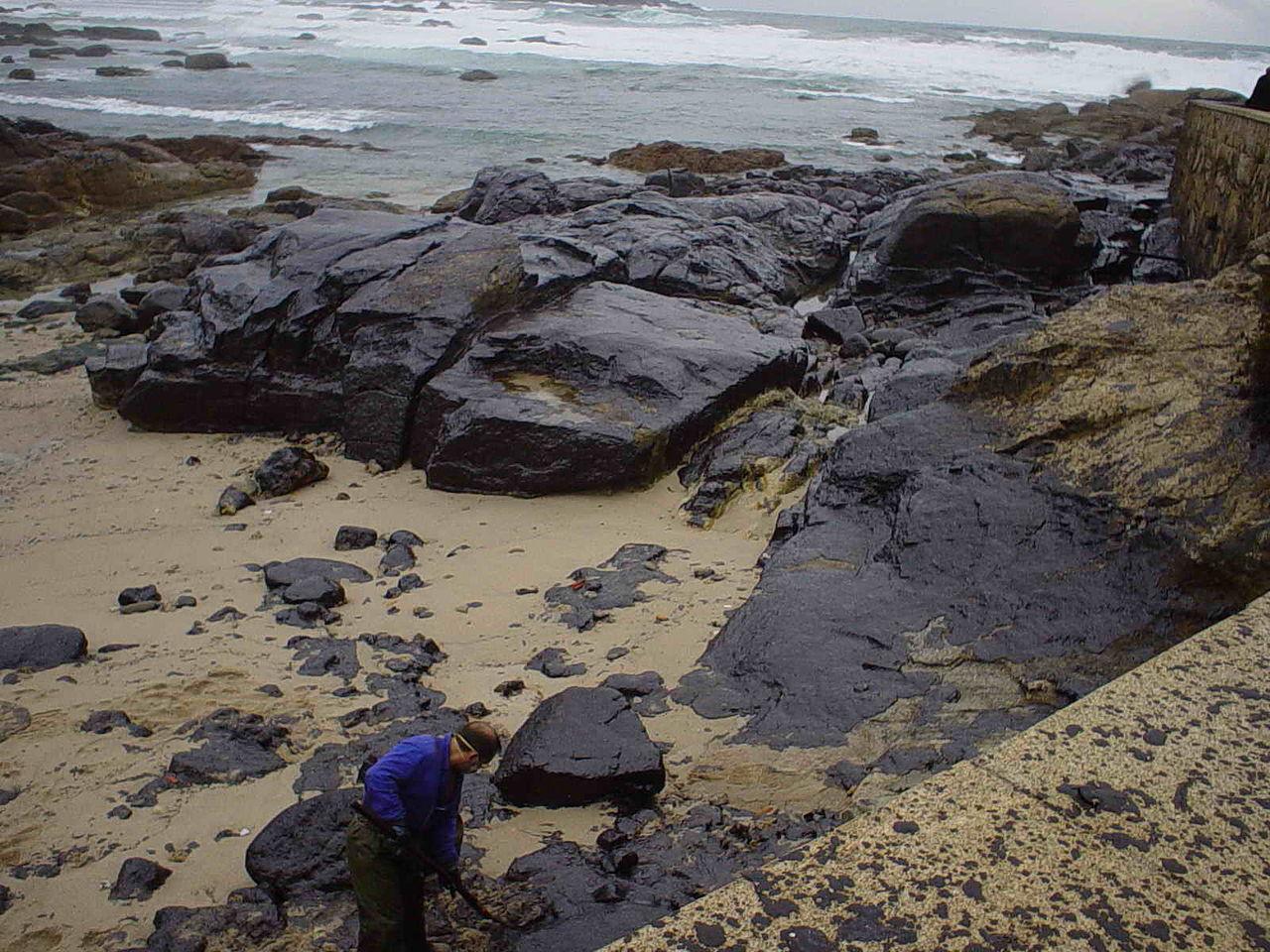 """Voluntario limpando la marea negra del petrolero """"Prestige"""" en Mugía"""