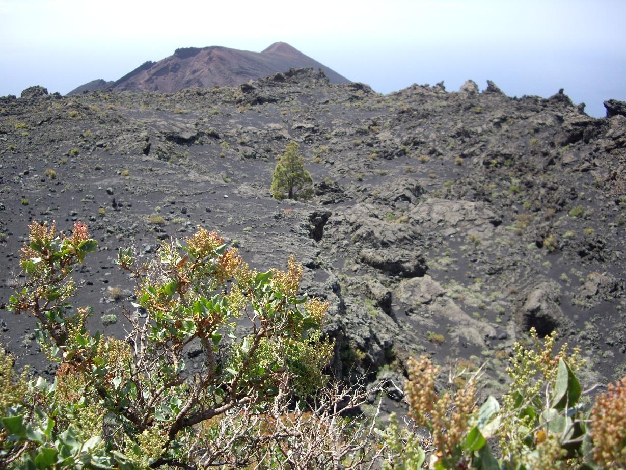 Fisura por la que salió la lava del volcán de 1677 en Fuencaliente