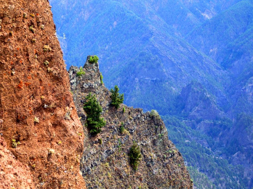 Los impresionantes escarpes forman parte del paisaje de la Caldera de Taburiente
