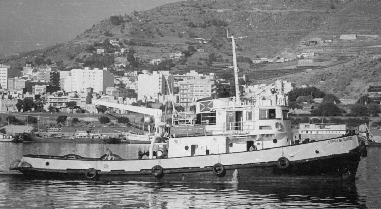 """El remolcador """"Cepsa Segundo"""", en aguas del puerto tinerfeño"""
