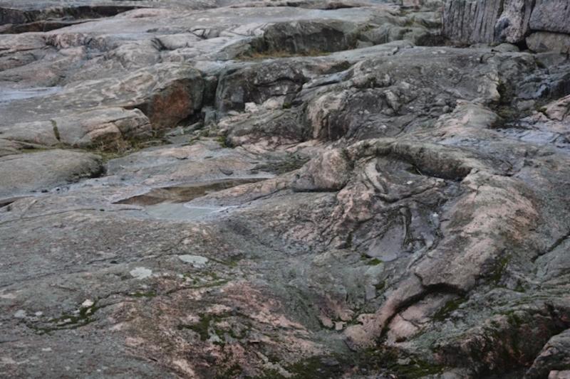 La colina donde se encuentra Temppeliaukio conserva parte de su entorno original