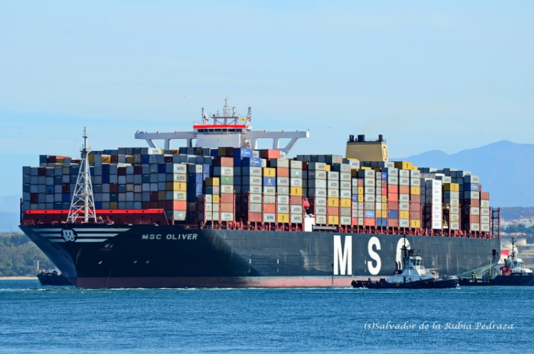 "Estampa marinera del buque portacontenediores ""MSC Oliver"""