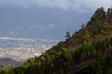 Un enjambre sísmico acontece en la dorsal Cumbre Vieja de La Palma