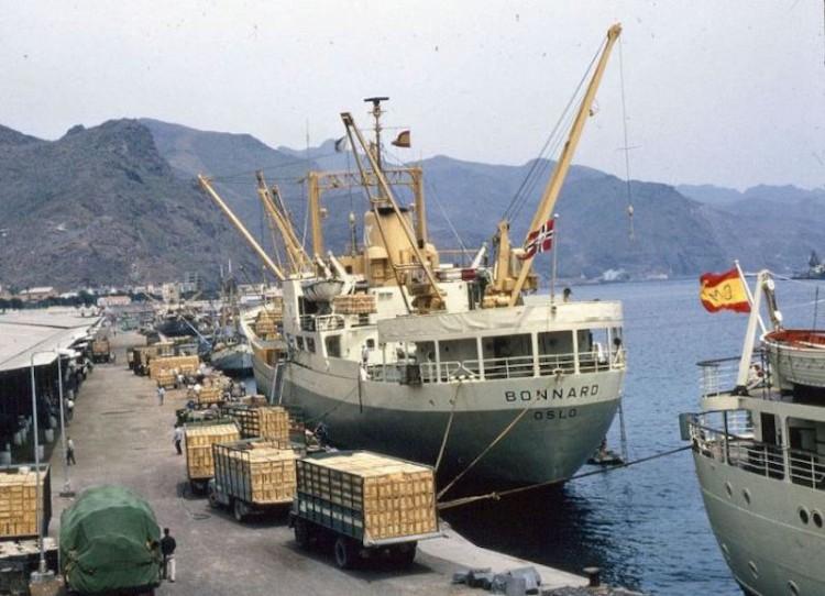 """El buque frutero noruego """"Bonnard"""", atracado en el muelle de ribera del puerto de Santa Cruz de Tenerife"""