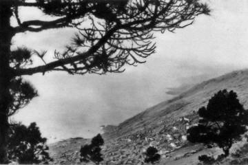 Panorámica de la zona alta de Las Indias, a comienzos del siglo XX
