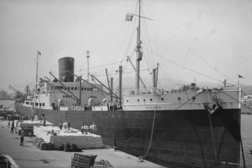 """El vapor """"Habana"""" descargando sacos de leche en polvo (23 de enero de 1950), en sacos, en el puerto de Santa Cruz de Tenerife"""