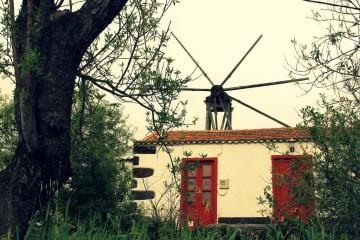El molino de El Roque, Puntagorda