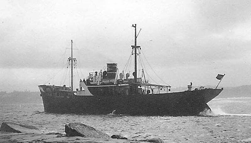 """El buque """"Z. lecumberri"""", visto por la aleta de babor"""