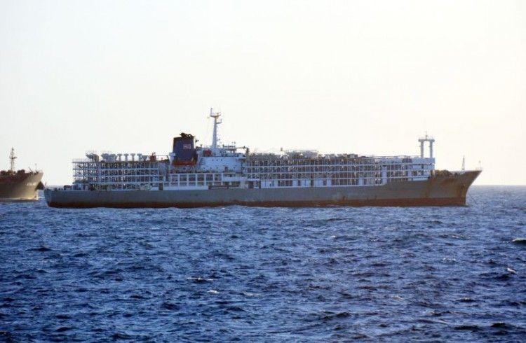 """Buque establo """"Zein 1"""" en Las Palmas, resultado de la transformación del buque frigorífico cubano """"Golfo de Guacanayabo"""""""