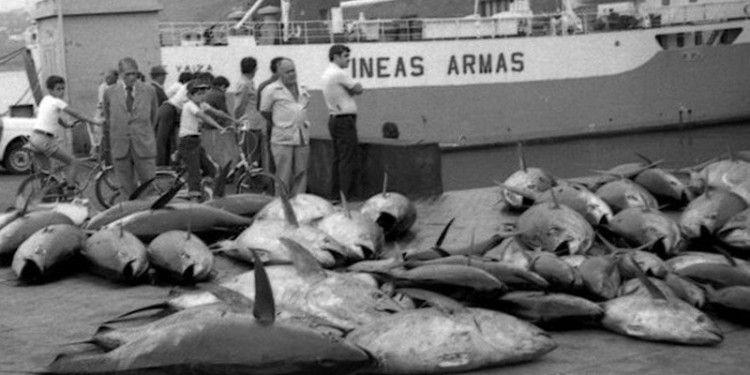 """El buque """"Volcán de Yaiza"""" fue el primer rolón que llegó al puerto de Santa Cruz de La Palma"""