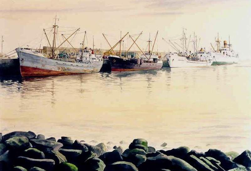 """Francisco Noguerol. """"Puerto Cabras"""""""