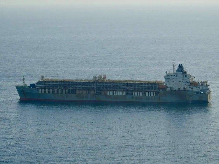 """El buque establo """"Bader III"""", fondeado en el puerto de Las Palmas de Gran Canaria"""