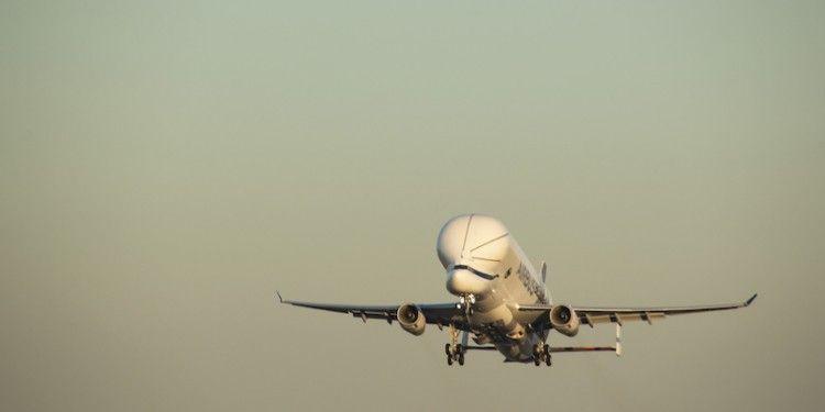 F-WBXL - Airbus A330-743L Beluga XL DSC_0432