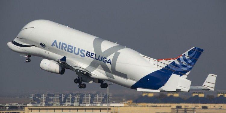 F-WBXL - Airbus A330-743L Beluga XL DSC_0543