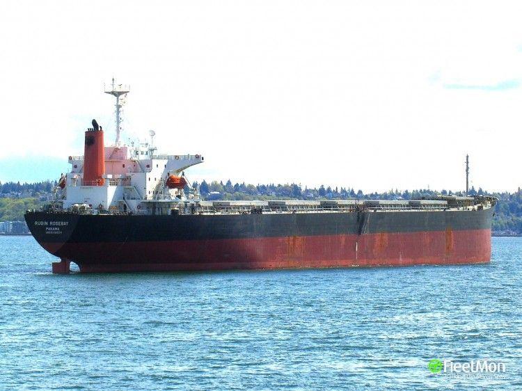 """Imagen del bulkcarrier chino """"Jin Hai Xuiang"""""""