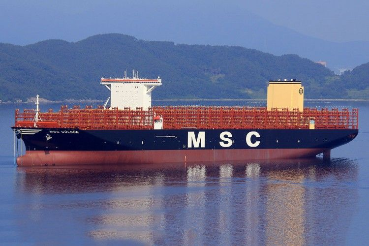 "Estampa marinera del buque ""MSC Gülsün"""