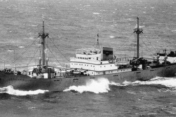 """Estampa marinera del buque frutero alemán """"Tazacorte"""""""