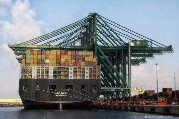 El sistema  portuario español es una estructura saneada