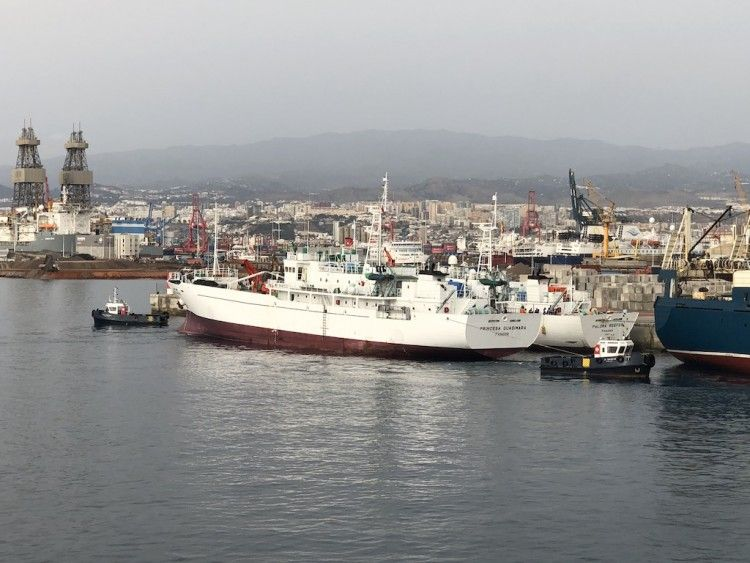 """Los buques """"Princesa Guasimara"""" y """"Paloma Reefer"""", ayer, en el puerto de Las Palmas de Gran Canaria"""