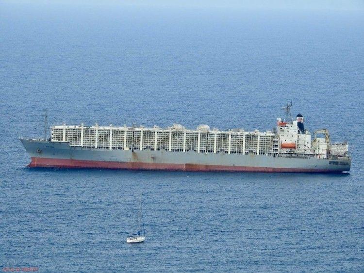 """El buque """"Maysora"""", ex """"Isla Soledad"""""""