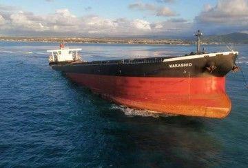 """Estado en el que se encuentra el bulkcarrier """"Wakhasio"""""""
