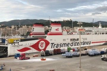 """El ferry """"Ciudad de Mahón"""", esta mañana, en el puerto de Palma"""