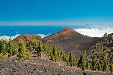 Cráter del volcán de 1646, situado en la dorsal de La Palma