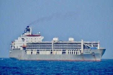"""El buque """"Bader III"""", fondeado en Las Palmas de Gran Canaria"""
