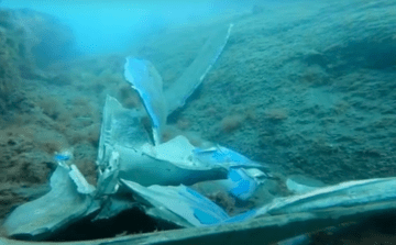 """Restos del casco de aluminio del catamarán """"Bentago Express"""""""